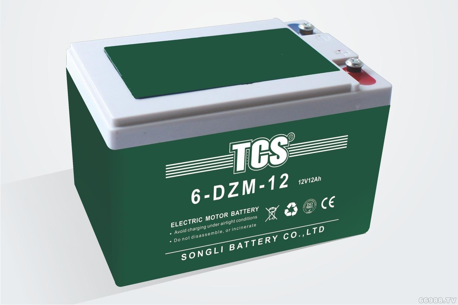 松立电动车电池TCS 6-DZM-12