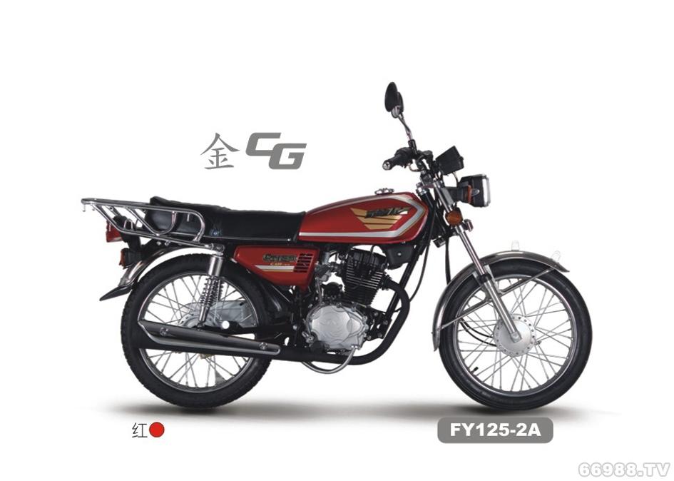 飞鹰FY125-2A 金CG摩托车跨骑车