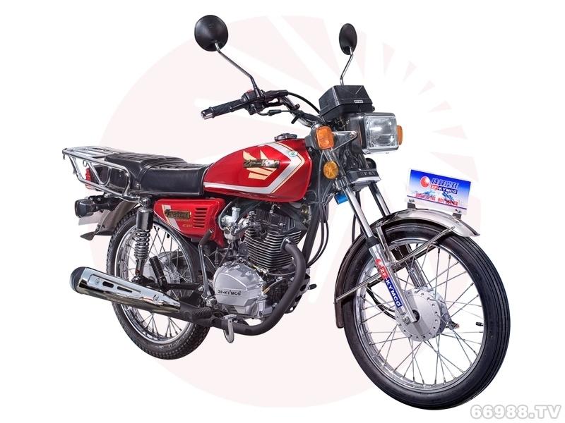 珠峰ZF125-5A(E)摩托车