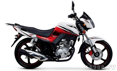 飞肯FK150-14A飞young摩托车