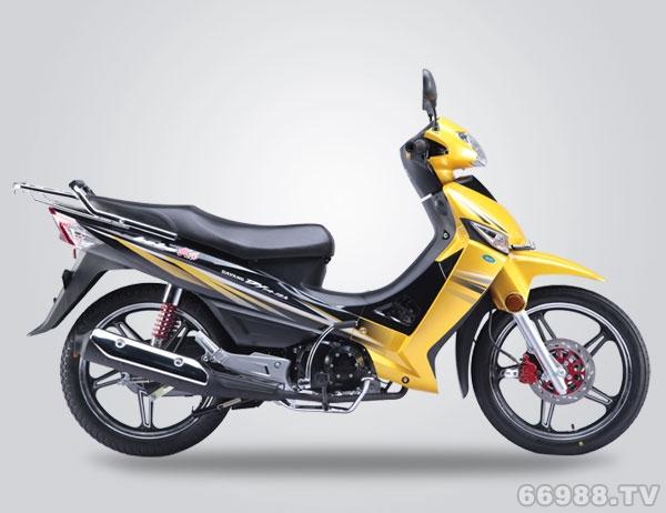 北方易初大阳DY110-18A摩托车