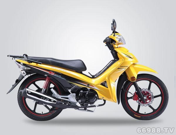 北方易初大阳DY110-28A摩托车