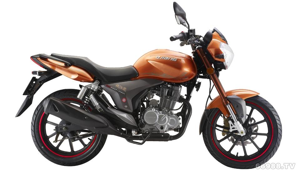 钱江龙QJ150-19A a1-1摩托车