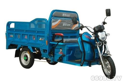 爱佳银丰路霸1.65米电动三轮车