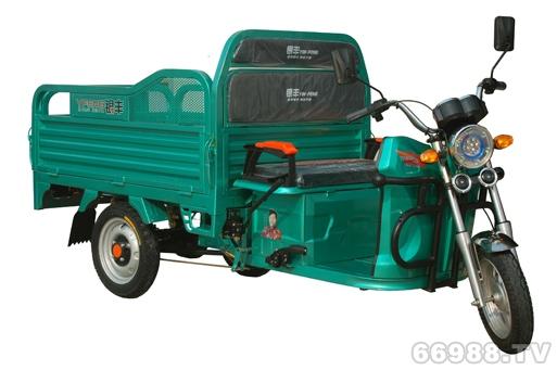 爱佳银丰路威1.55米电动三轮车